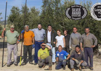 El aceite de oliva Manuel Coca Morán, consigue la medalla de oro en el concurso internacional de Londres y la medalla de plata en New York